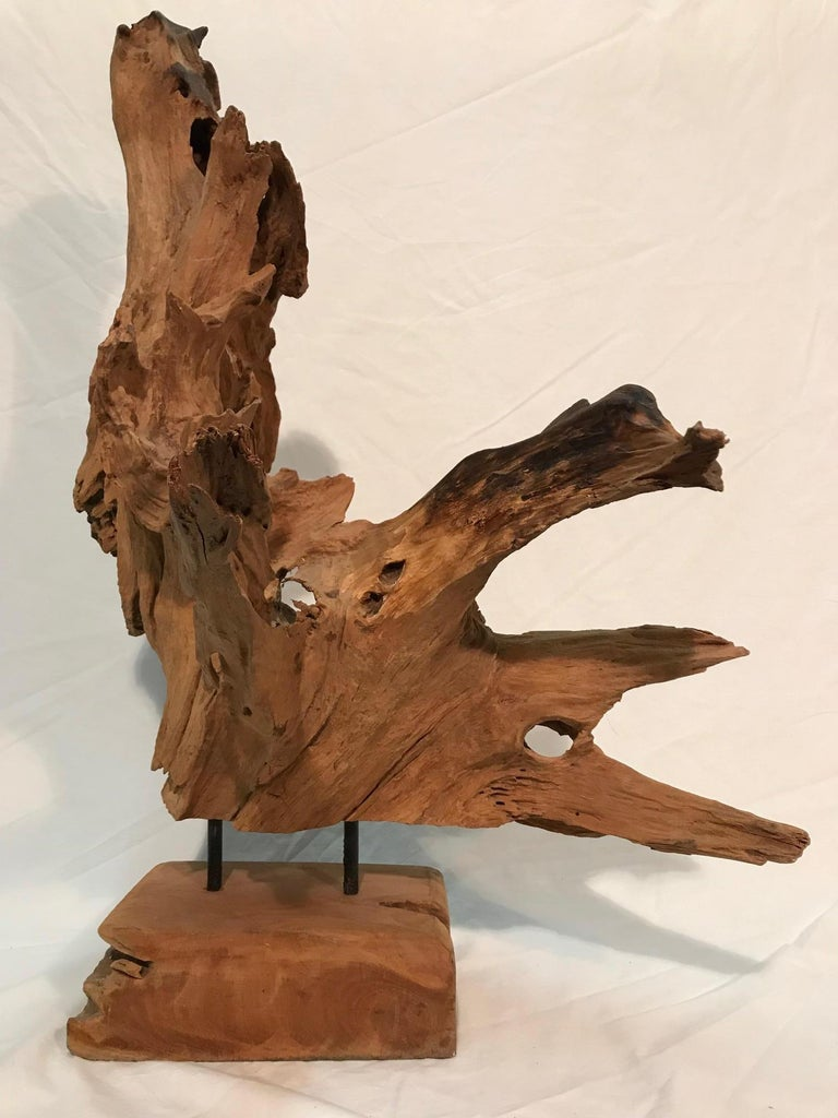 Pair of 1970s Era Steel Rod Mounted Driftwood Sculptures For Sale 4
