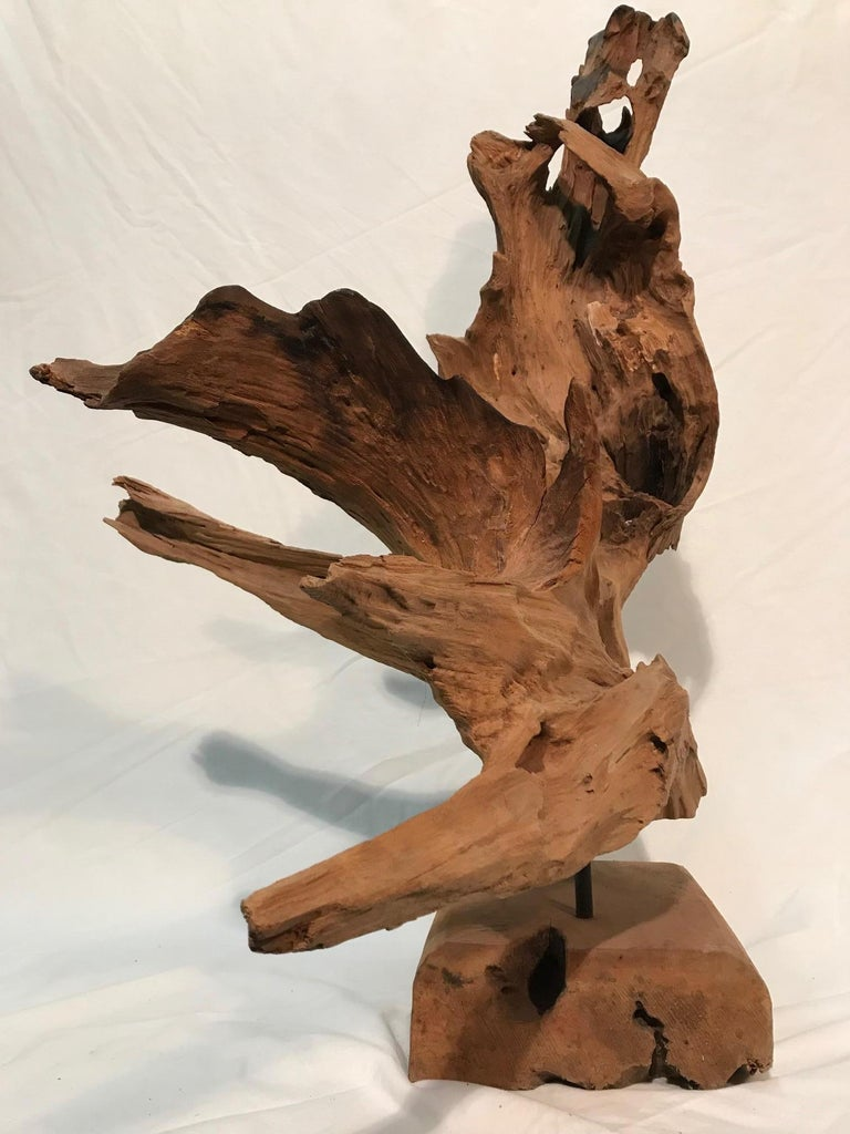 Pair of 1970s Era Steel Rod Mounted Driftwood Sculptures For Sale 7