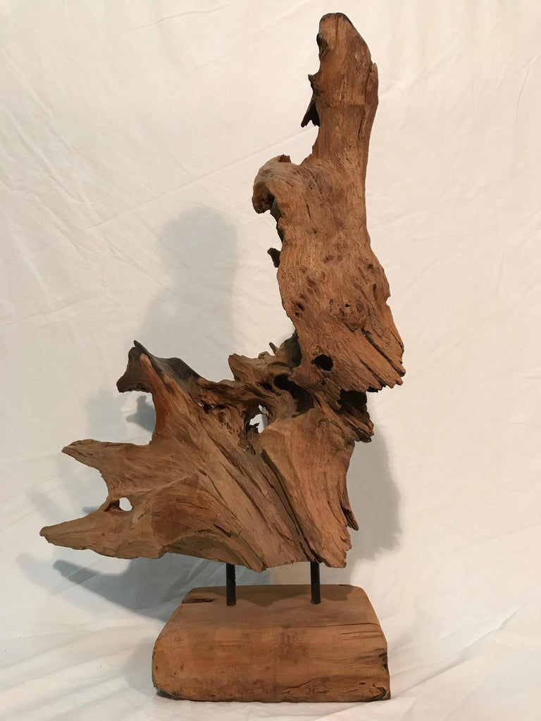 Pair of 1970s Era Steel Rod Mounted Driftwood Sculptures For Sale 8
