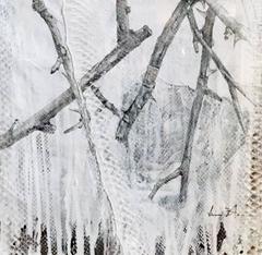 """""""Thorn Study II"""" By Jake Blake"""