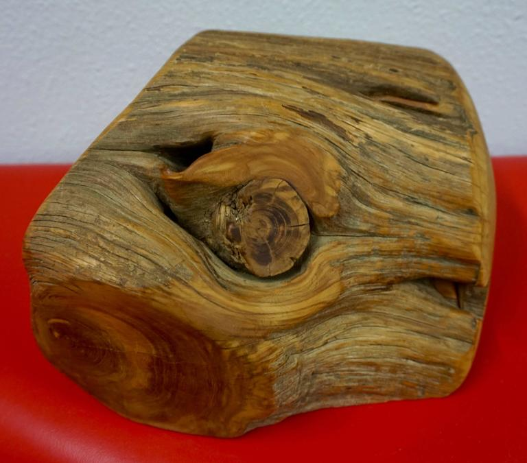Hand Carved Organic Jewelry Box In Excellent Condition For Sale In Cathedral City, CA