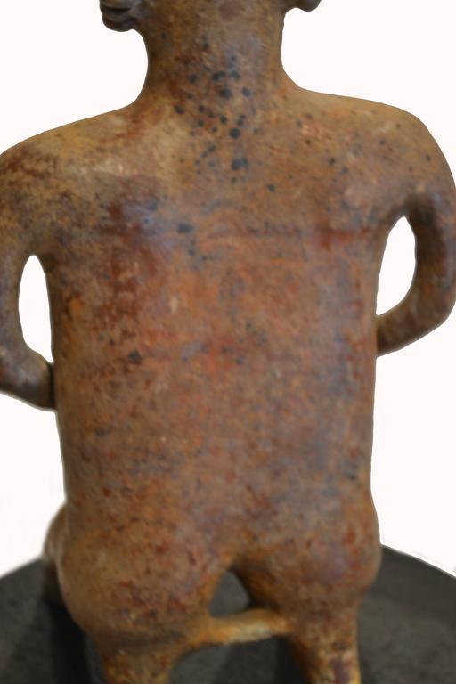 Large Pre-Columbian Nayarit Seated Male Figure Sculpture 4