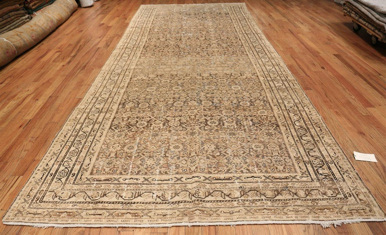 Antique Persian Shabby Chic Malayer Wide Hallway Gallery Rug, Country of Origin: Persia, Circa Date: Early 20th century (Around the 1910s) – This shabby chic rug, a beautiful antique Persian Malayer wide hallway gallery rug, sparkles with age and