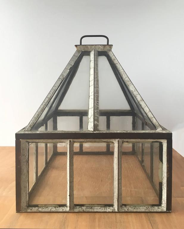 Beautiful, spacious glass houses.  Each terrarium has a handle on the top and come in two pieces, with the roof lifting off the walls.  These are vintage, elegant looking objects that inspire the imagination.  Sold separately.