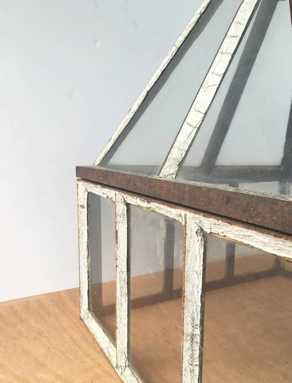 American Vintage Terrariums For Sale