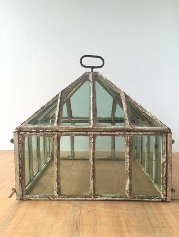 Vintage English Victorian Cold Frame Terrarium, c. 1860s at 1stdibs