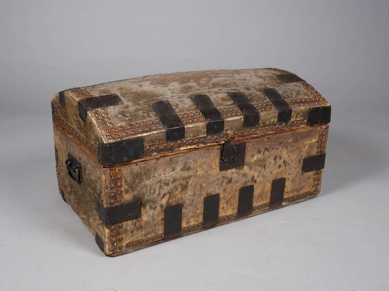 Collection of 19th Century Hide and Leather Trunks 2