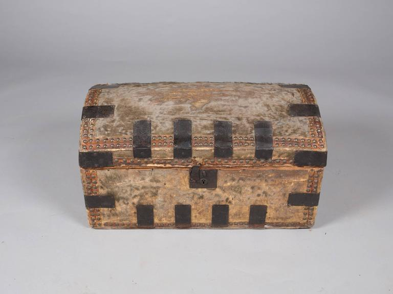 Collection of 19th Century Hide and Leather Trunks 3