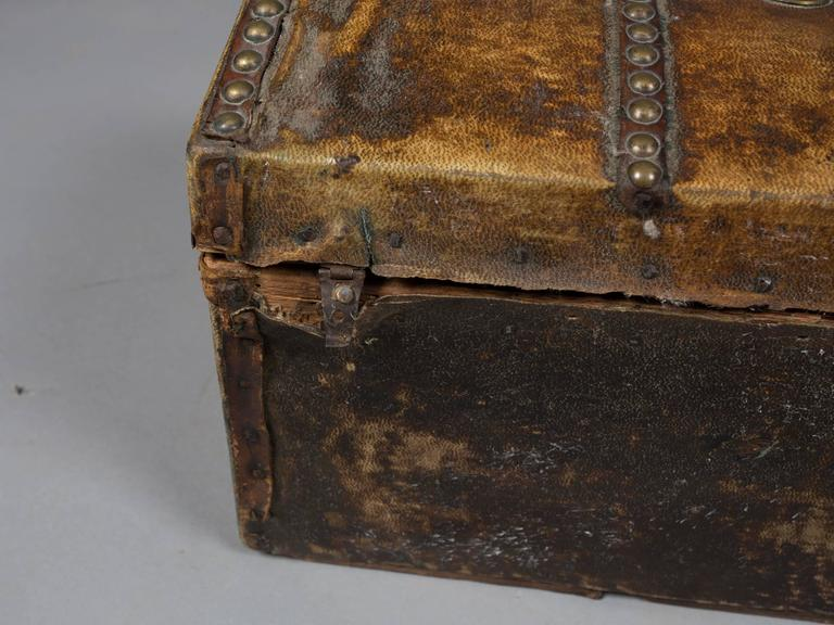 Collection of 19th Century Hide and Leather Trunks 9