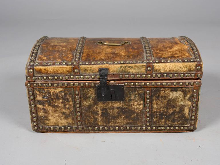 Collection of 19th Century Hide and Leather Trunks 7