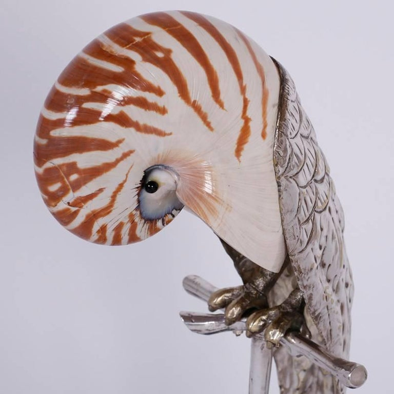20th Century Two Mid-Century Nautllus Shell Parrot Sculptures For Sale
