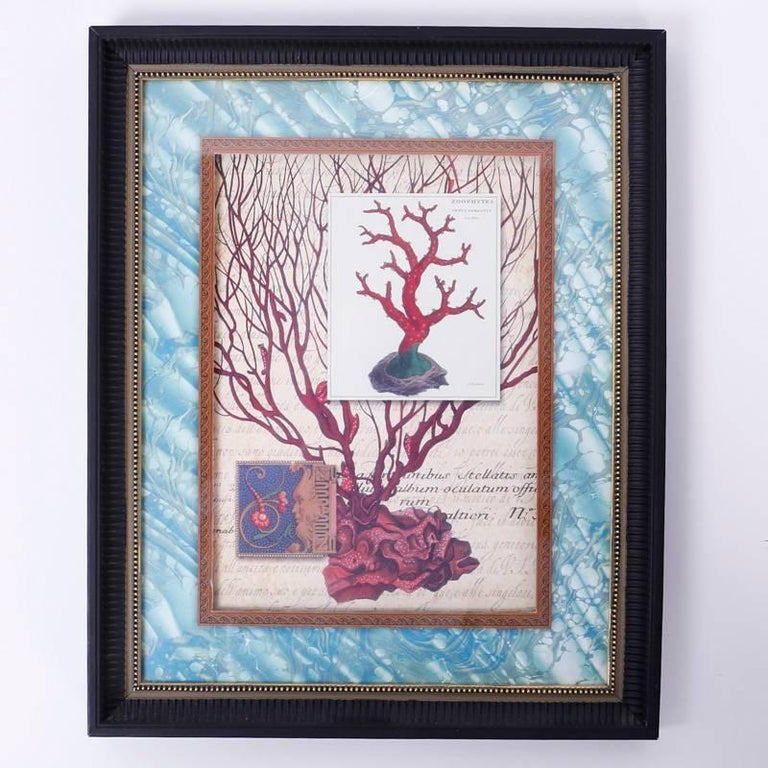 Late 20th Century Set of Four Red Coral Prints in Custom Frames For Sale