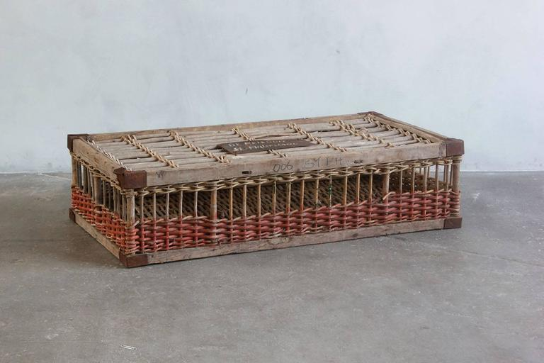 Woven pigeon crate with green white and orange painted details.