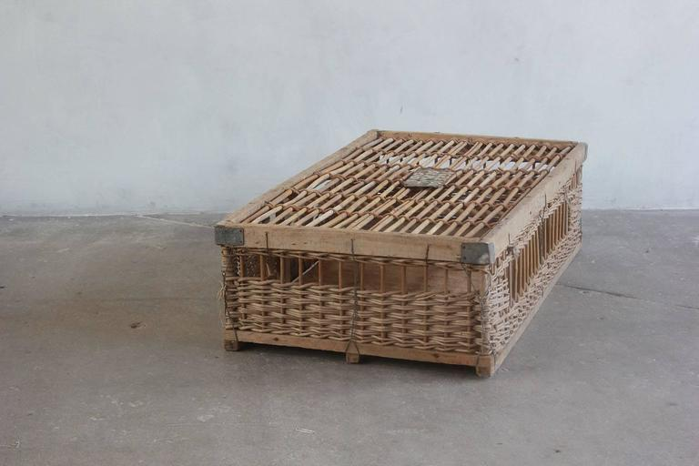 Woven Pigeon Crate with Painted and Metal Details For Sale 1