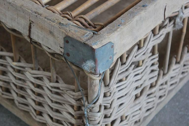 Late 19th Century Woven Pigeon Crate with Painted and Metal Details For Sale