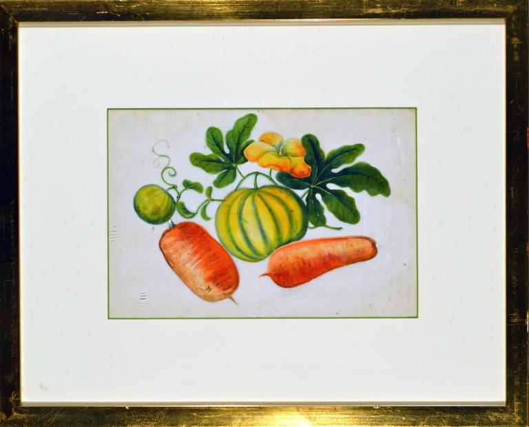 China Trade Watercolor Paintings of Vegetables, Set of Six In Good Condition For Sale In Downingtown, PA