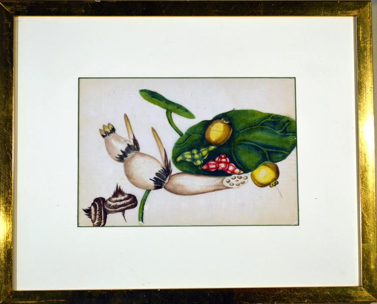 Paper China Trade Watercolor Paintings of Vegetables, Set of Six For Sale