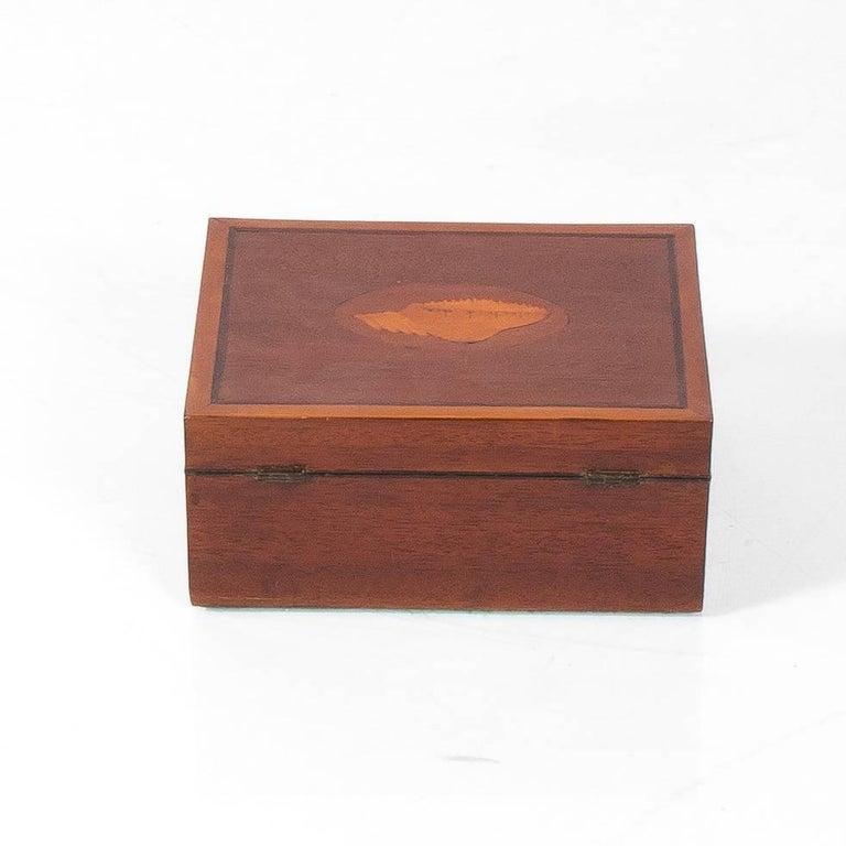 English mahogany box with shell design, circa 20th century.
