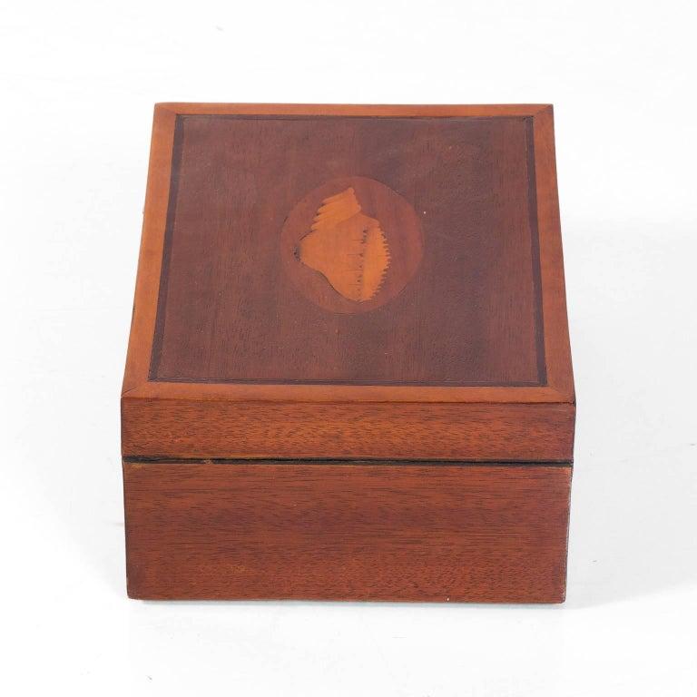 Mahogany Box with Shell Design 4