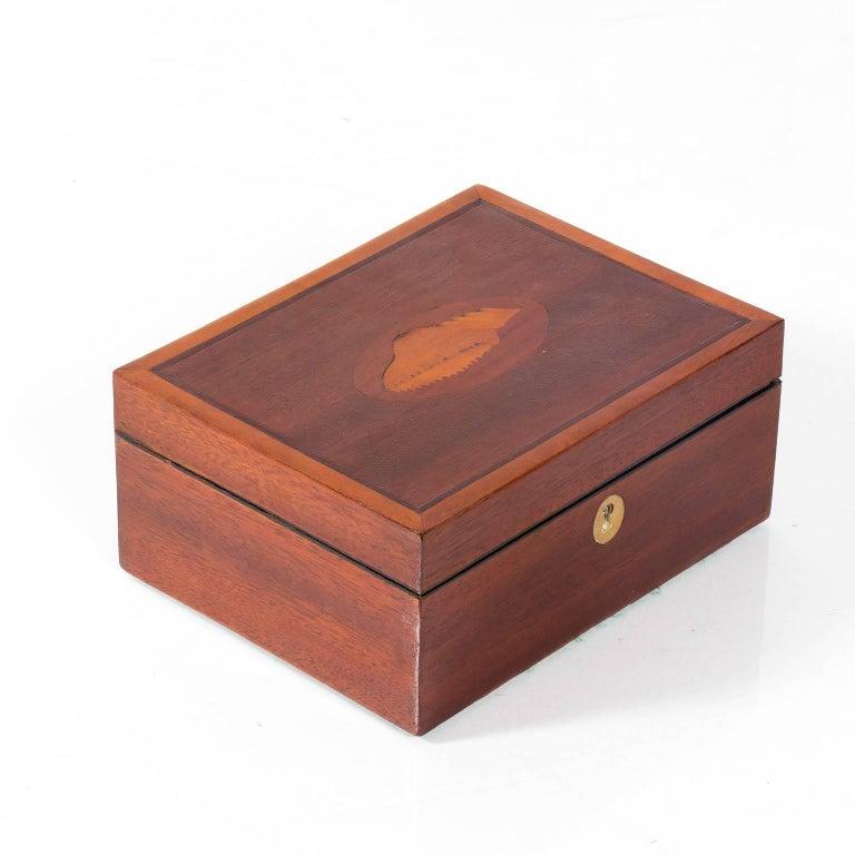 Mahogany Box with Shell Design 3