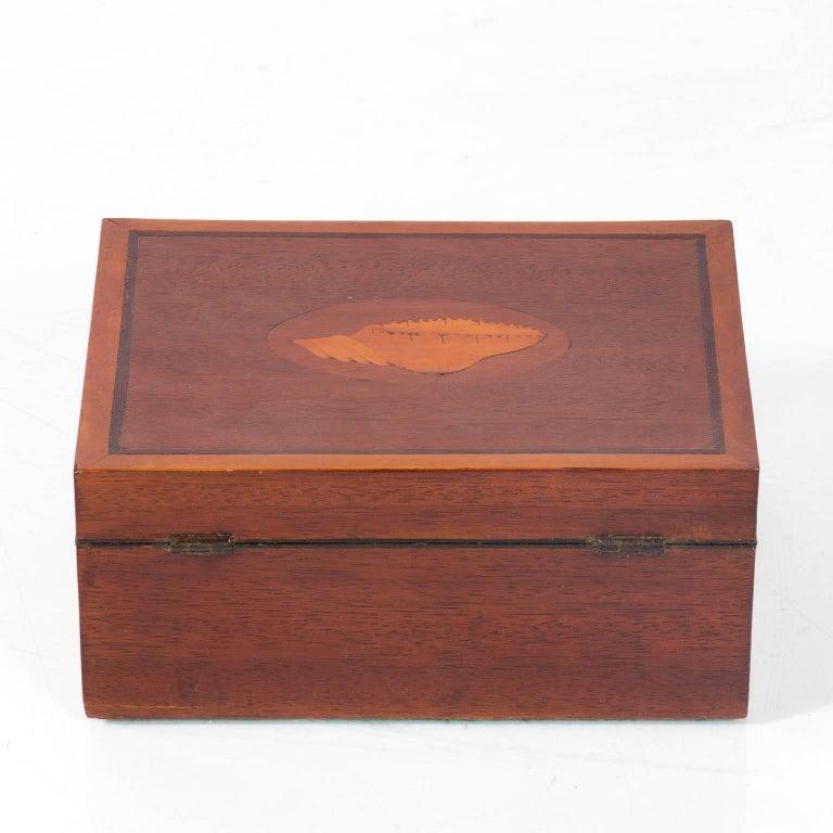Mahogany Box with Shell Design 5