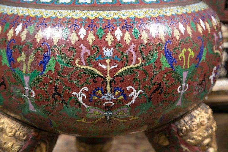 20th Century Cloissone Lidded Bronze Urn For Sale