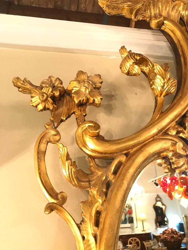 Pair of George II Style Giltwood Wall or Console Mirrors with Phoenix Carvings For Sale 4