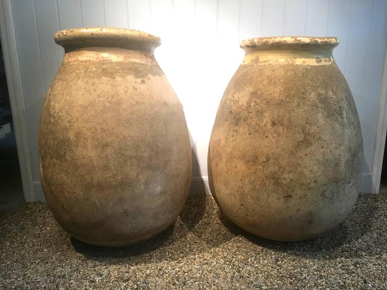 Very Large French 18th Century Terracotta Biot Pot For Sale 5
