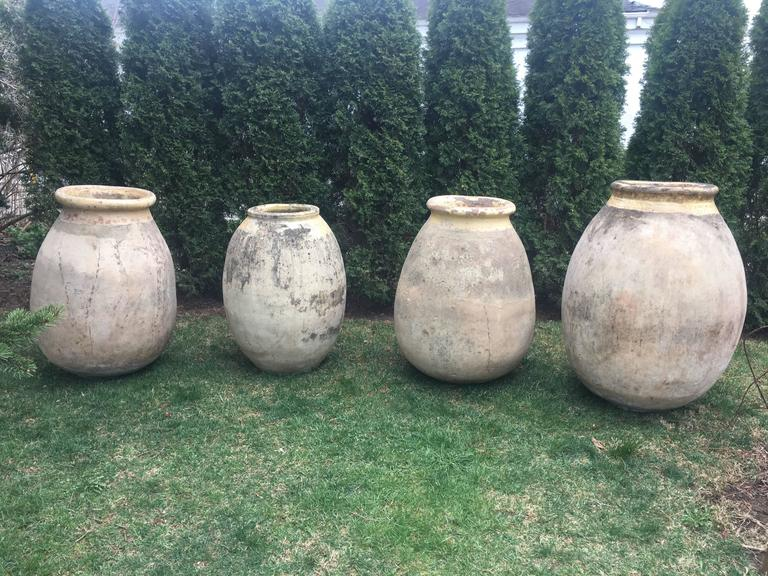 Very Large French 18th Century Terracotta Biot Pot For Sale 4