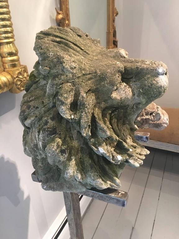 18th Century and Earlier 17th Century Limestone Lion's Head on Contemporary Polished Steel Stand For Sale