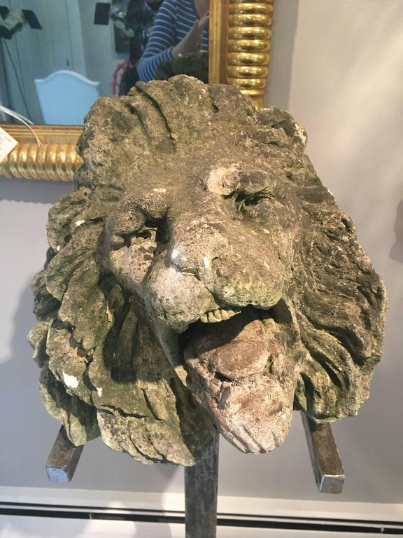 Hand-Carved 17th Century Limestone Lion's Head on Contemporary Polished Steel Stand For Sale