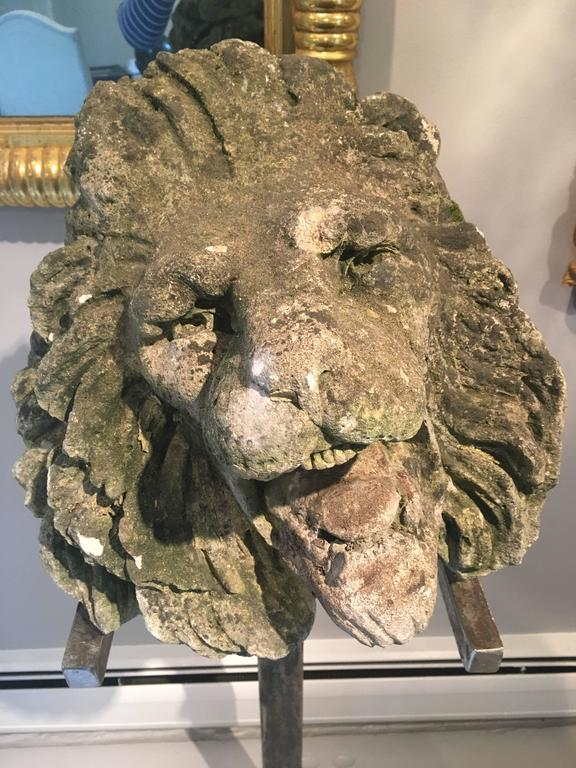 17th Century Limestone Lion's Head on Contemporary Polished Steel Stand For Sale 1