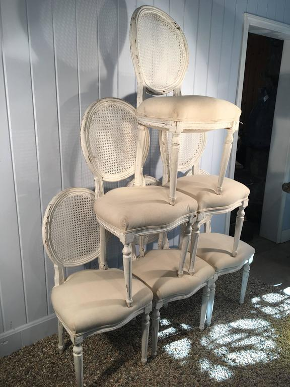 Six Louis XVI Style Painted Dining Chairs with Caned Backs For Sale 3