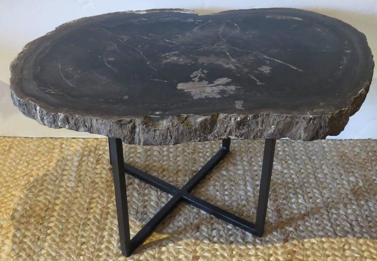 Beautiful slab of petrified wood with custom steel base. Perfect as a cocktail or coffee table.