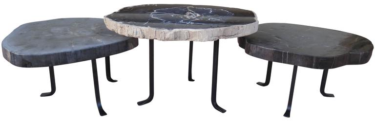 group petrified wood nesting coffee tables table singapore round set