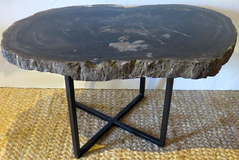 Contemporary Black and Gray Petrified Wood Coffee or Side Table For Sale