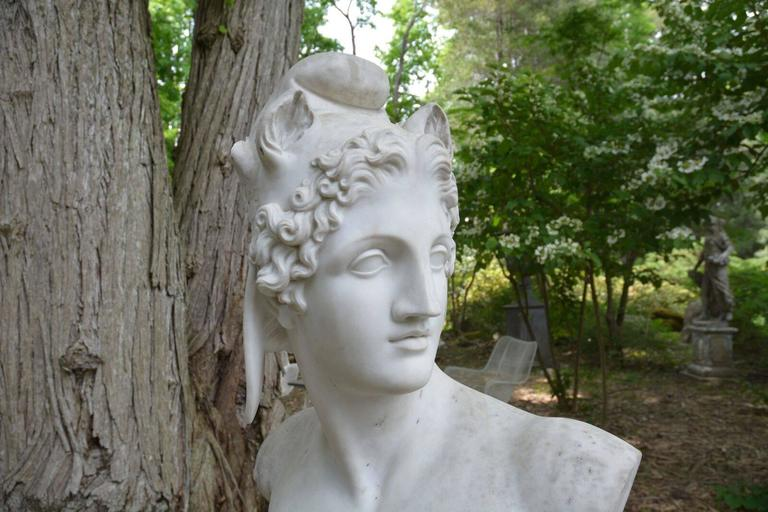 Marble Bust of Perseus 4
