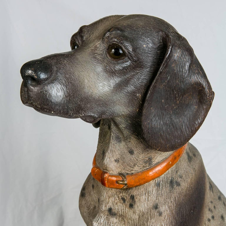 Austrian Hound Lifesize Cold Painted Antique In Excellent Condition For Sale In New York, NY