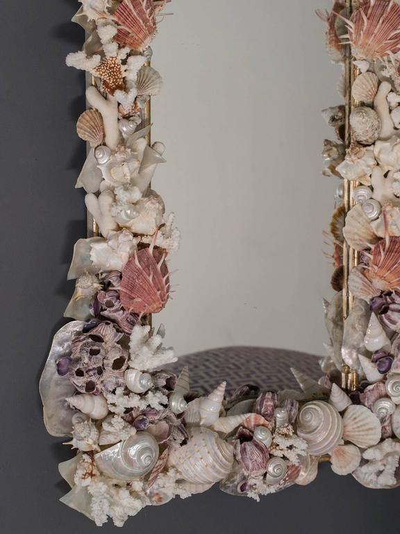 Sea Shell Mirror Of Rectangular Shape With Nautilis And