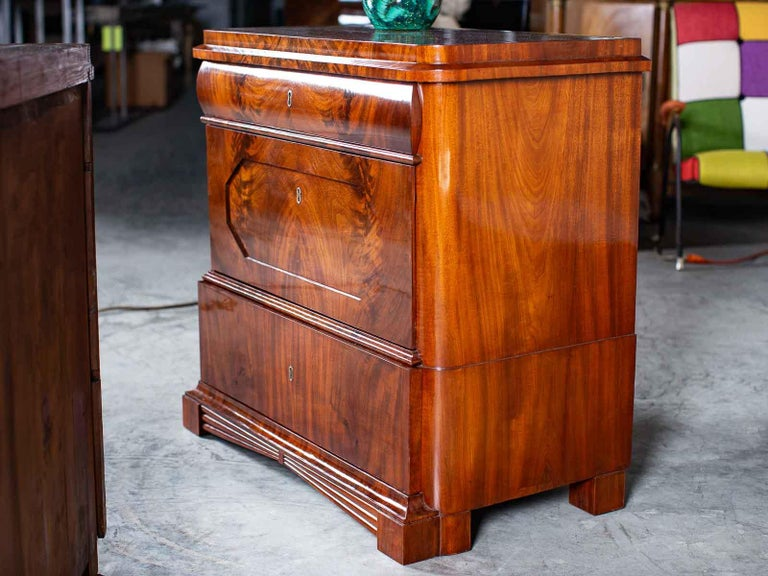 19th Century Pair of Biedermeier Period North German Mahogany Chest of Drawers, circa 1820 For Sale