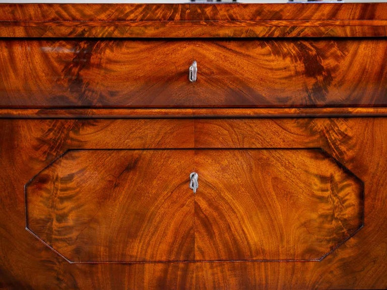 Pair of Biedermeier Period North German Mahogany Chest of Drawers, circa 1820 For Sale 3