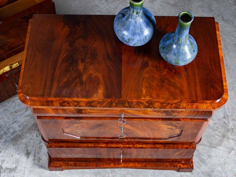 Pair of Biedermeier Period North German Mahogany Chest of Drawers, circa 1820 For Sale 10