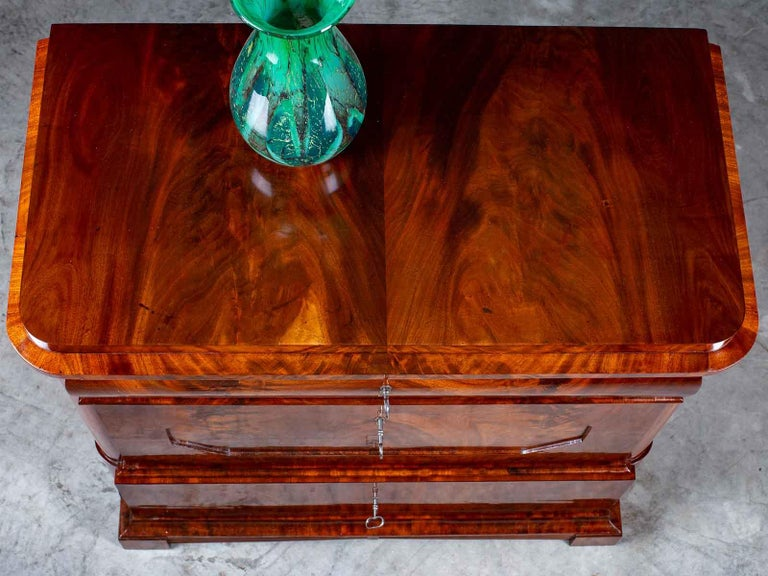 Pair of Biedermeier Period North German Mahogany Chest of Drawers, circa 1820 For Sale 11