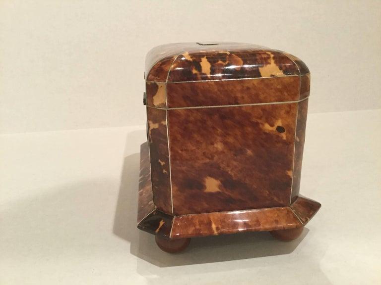 19th Century Tortoiseshell Tea Caddy 6