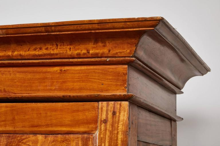19th Century Two-Door Simple Satinwood Cabinet For Sale 2