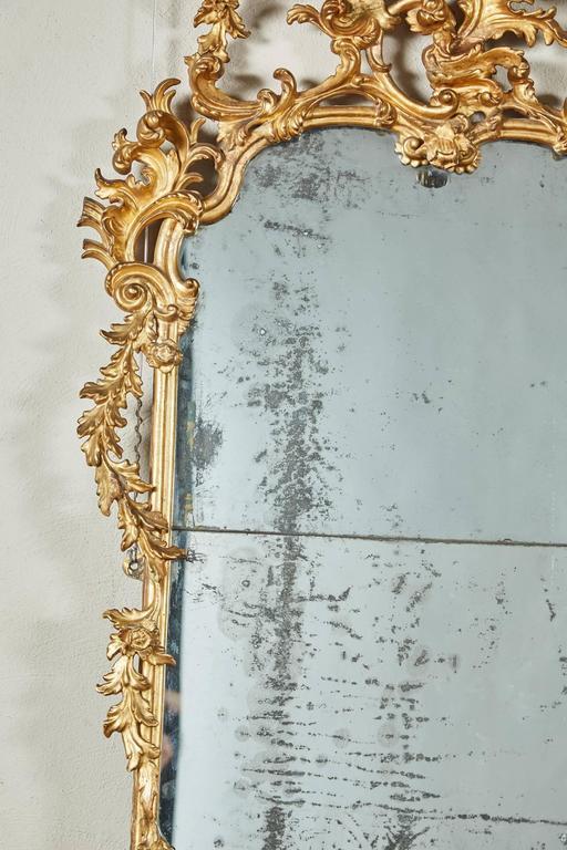 Mid-18th Century Italian Giltwood Pier Rococo Mirror In Good Condition For Sale In South Pasadena, CA