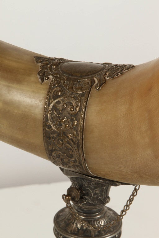 19th Century Drinking Horn For Sale 1