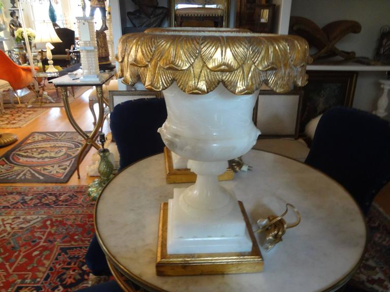 Pair of Italian Alabaster Urn Lamps on Giltwood Bases In Good Condition For Sale In Houston, TX