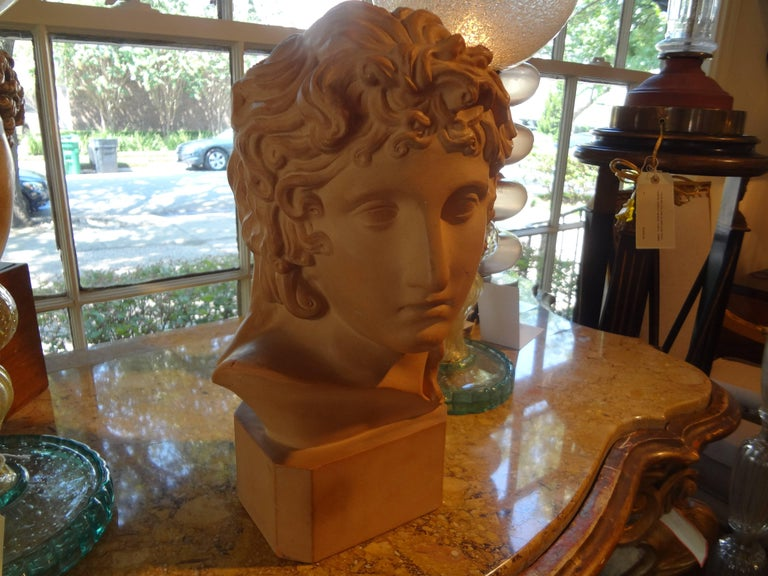 Beautifully detailed French terracotta bust sculpture of a classical Greek, signed R. D'Arly, Paris, circa 1920.