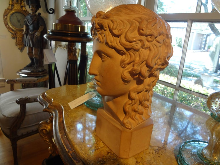 Classical Greek French Classical Terra Cotta Bust Signed R. D'Arly, Paris For Sale